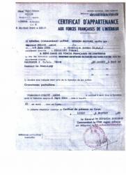 ffi-3.jpg
