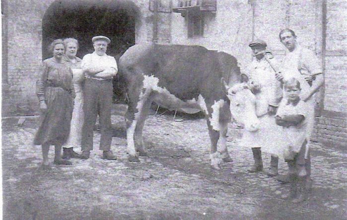 la-vache-riquier.jpg